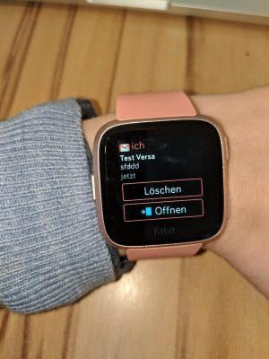 Fitbit 20 | Android-User.de