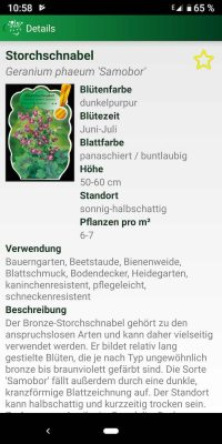 Stauden 4 | Android-User.de