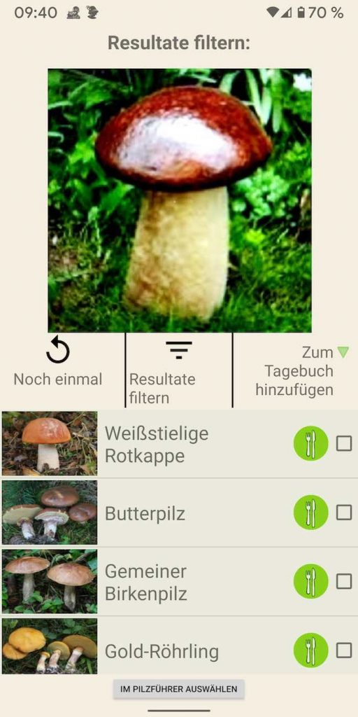 Pilze 11 | Android-User.de