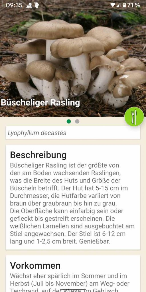 Pilze 5 | Android-User.de