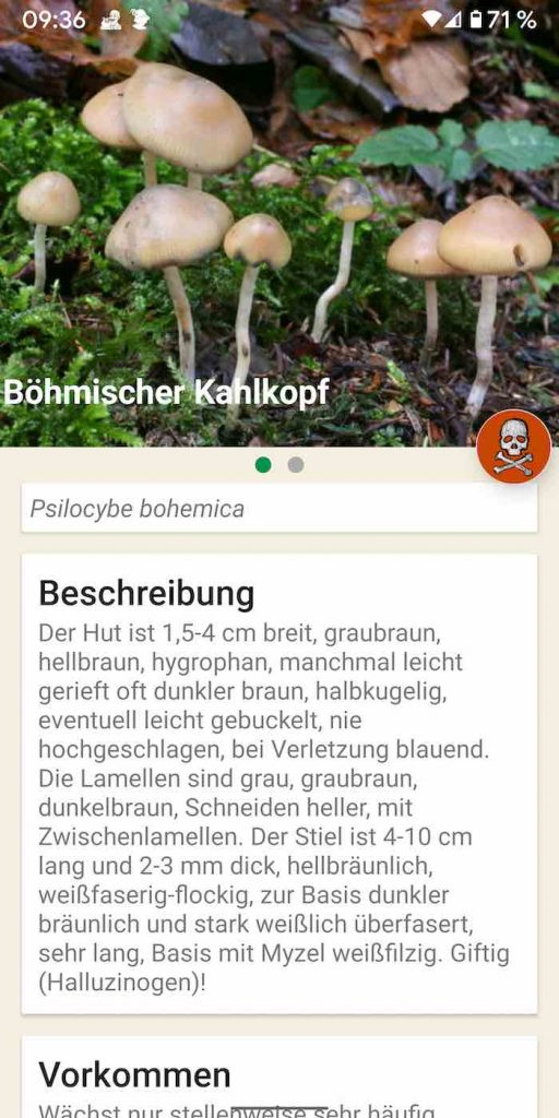 Pilze 8 | Android-User.de
